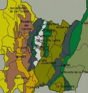 mapa-fitogeográfico-saltaC